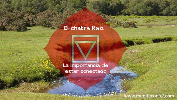 El Chakra de la Raíz – La importancia de estar conectadx a la Tierra.