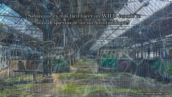 WILD induce un sueño consciente.