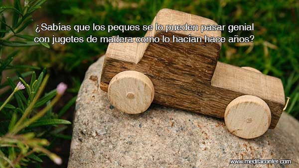 Los juguetes de madera alimentan la mente, la electrónica no.