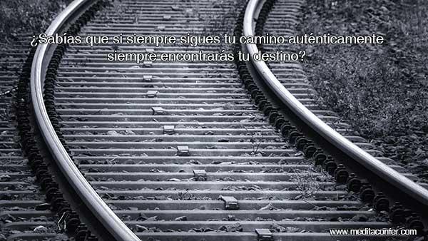 Siguiendo tu camino, te llevará a tu destino, incluso en momentos de transición.  (Sabías que 2020)