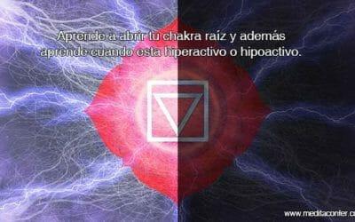 Abrir el Chakra Raíz: Entendamos el estado energético de este Chakra.