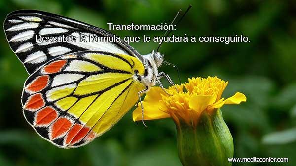 Es la hora de la transformación.
