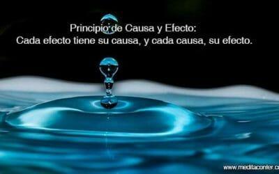 Principio de Causa y Efecto: Cada efecto tiene su causa, y cada causa, su efecto.
